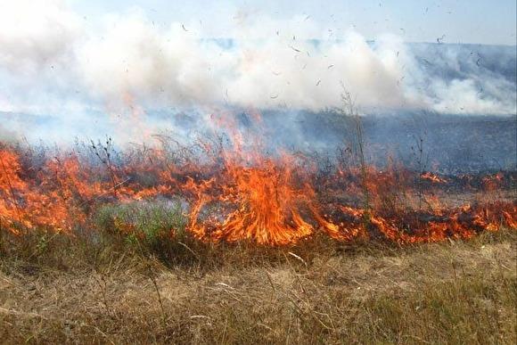 На Прикарпатті знову горить суха трава та сміття