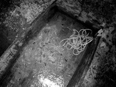 Прикарпатця оштрафували за риболовлю 30-метровою сіткою