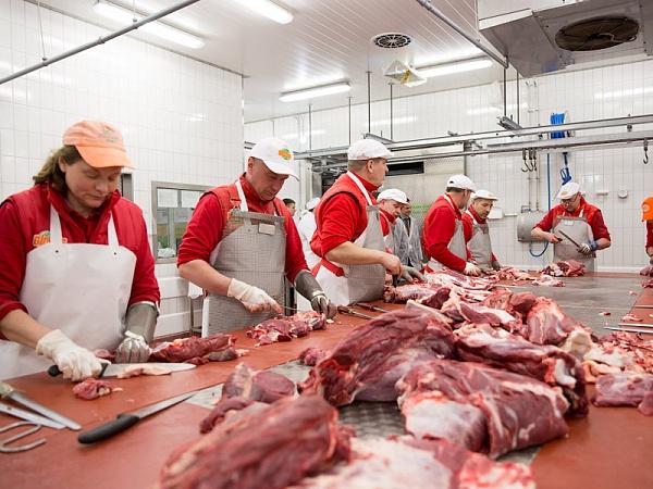 Іноземна компанія планує збудувати на Прикарпатті м'ясопереробний завод