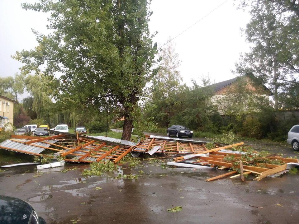 На Прикарпатті сильний вітер повалив дерева та позривав дахи (фотофакт)