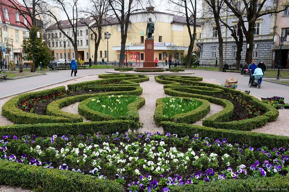 Чиновники розповіли, як саме озеленюють Івано-Франківськ