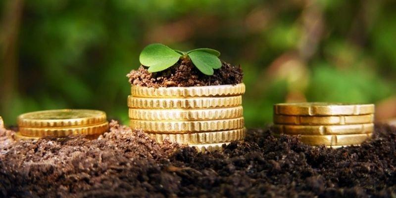 Прикарпатці сплатили до місцевих бюджетів близько 143 мільйонів плати за землю